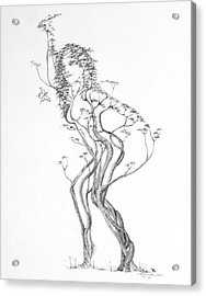 Butterfly Dancer Acrylic Print by Mark Johnson
