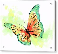 Butterfly Digital Watercolor Painting Acrylic Print
