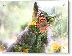 Butterfly Dog Acrylic Print