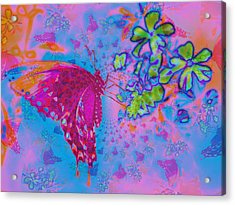 Butterfly Dreams Acrylic Print by Rose  Hill