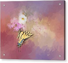 Butterfly Dreams Acrylic Print by Theresa Tahara