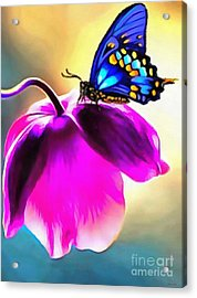 Butterfly Floral Acrylic Print