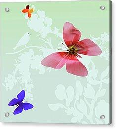 Butterfly Floral Acrylic Print by Debra     Vatalaro