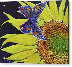 Butterfly Haven Acrylic Print