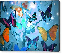 Acrylic Print featuring the photograph Butterfly Heaven by Rosalie Scanlon