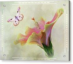 Butterfly Hibiscus Art II Acrylic Print