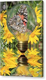 Butterfly In A Bulb II Acrylic Print by Shane Bechler