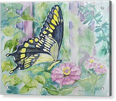 Butterfly In My Garden Acrylic Print by Judy Loper