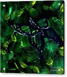 Butterfly In The Bush Acrylic Print by Janelle Dey