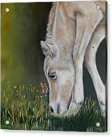 Acrylic Print featuring the painting Butterfly Kiss by Ceci Watson