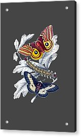 Butterfly Moth T Shirt Design Acrylic Print by Bellesouth Studio