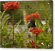 Butterfly Notes Acrylic Print