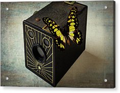 Butterfly On Old Camera Acrylic Print by Garry Gay