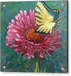 Butterfly On Zinnia  Acrylic Print by Bonita Waitl