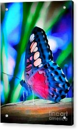 Butterfly Realistic Painting Acrylic Print