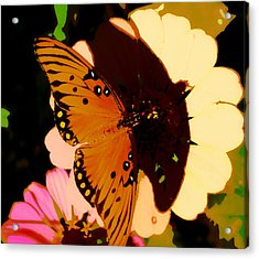 Butterfly Shadows Acrylic Print by Dottie Dees