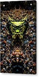 Butterfly Tiger Acrylic Print