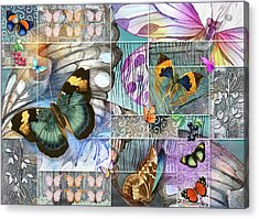 Butterfly Wings Collage Acrylic Print