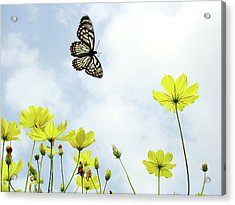 Butterfly With Flowers Acrylic Print by Adegsm