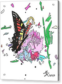 Butterfly2010 Acrylic Print