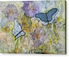 Butterflys On Color Acrylic Print