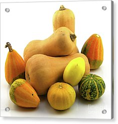 Acrylic Print featuring the photograph Butternut Squash With Gourds  by Ricky L Jones