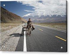 By Donkey On The Karakorum Highway Acrylic Print