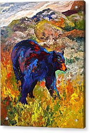 By The River - Black Bear Acrylic Print by Marion Rose