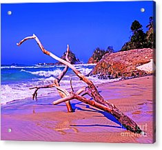 Byron Beach Australia Acrylic Print by Chris Smith