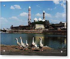 C - Bhopal Acrylic Print by Mohammed Nasir