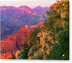Canyon Allure Acrylic Print by Mikes Nature