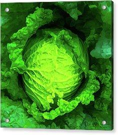 Cabbage 02 Acrylic Print by Wally Hampton