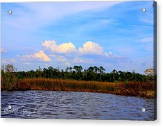 Cabbage Palms And Salt Marsh Grasses Of The Waccasassa Preserve Acrylic Print by Barbara Bowen