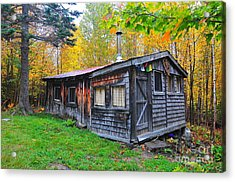 Cabin In The Woods  Acrylic Print by Catherine Reusch Daley