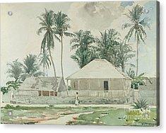 Cabins, Nassau Acrylic Print by Winslow Homer