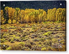 Cache La Poudre River Colors Acrylic Print by Jon Burch Photography