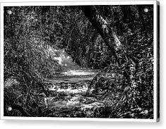 Cachoeira-parque Estadual-horto-campos Do Jordao-sp Acrylic Print