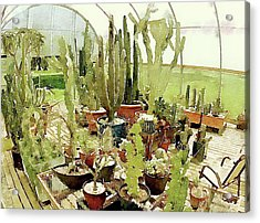 Cacti In The Greenhouse Acrylic Print by Susan Maxwell Schmidt