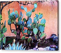 Cactus And Adobe Acrylic Print