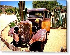 Acrylic Print featuring the photograph Cactus Car by Riana Van Staden