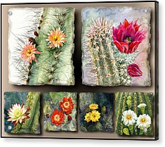Acrylic Print featuring the painting Cactus Collage 10 by Marilyn Smith