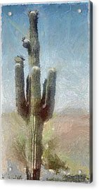 Cactus Acrylic Print by Jeff Kolker
