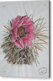 Cactus Joy Acrylic Print by Sharyn Winters