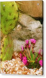 Cactus Lines Acrylic Print by Terry Cork