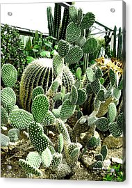 Cactus Tower 61d Acrylic Print by Brian Gryphon