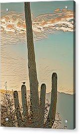 Acrylic Print featuring the photograph Cactus Wren Serenade by Dan McManus
