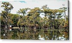 Caddo Bayou Acrylic Print