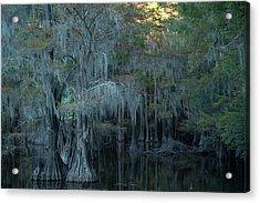 Caddo Lake #2 Acrylic Print