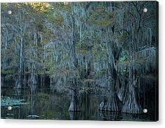 Caddo Lake #3 Acrylic Print