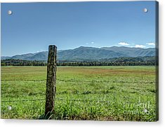 Cades Cove Pasture Acrylic Print by Patrick Shupert